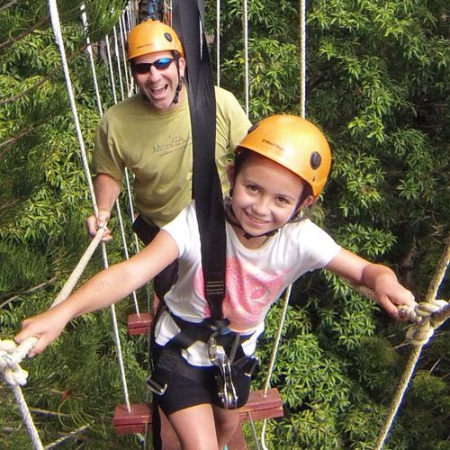 Zipline Treetop Tour — Just Live